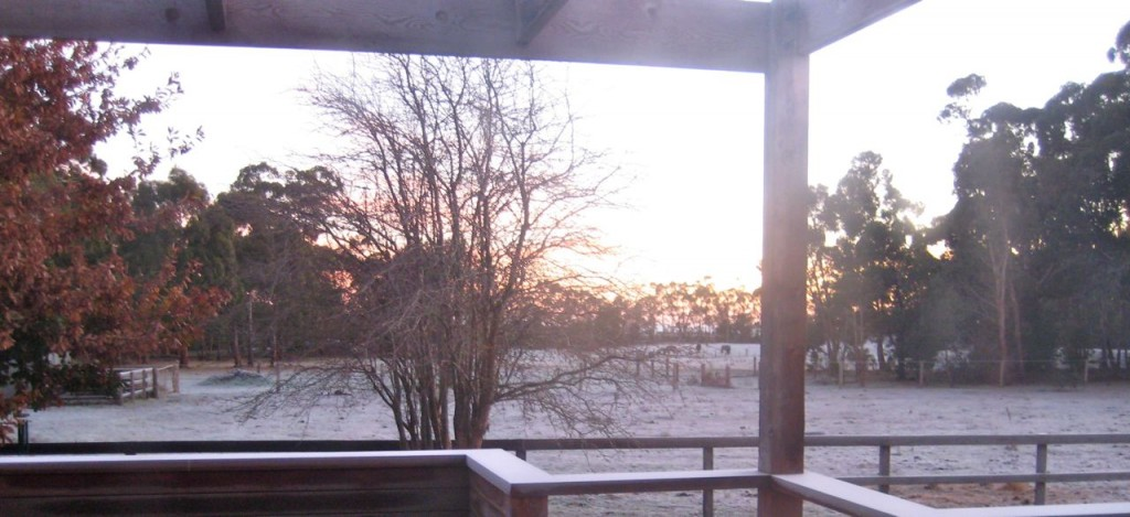 Frost at the Farm